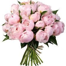 peonies flower delivery best 25 peonies delivery ideas on peonies flower