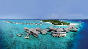 maldives natural world safaris