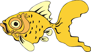 funny cartoon fish pictures free download clip art free clip