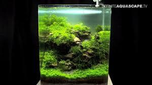 nano aquascape aquascaping the art of the planted aquarium 2013 nano pt 2 youtube