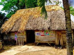 Mexican Thatch Roofing by What Are Mayan Houses Like We Show You Inside And Explain Them