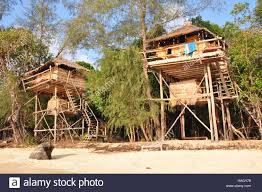 tree house bungalows on koh rong island cambodia stock photo