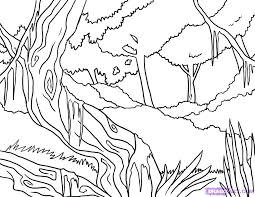 preschool jungle coloring pages jungle coloring sheets pictures of jungle animals jungle animal