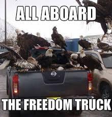 Funny Eagles Memes - all aboard eagle meme