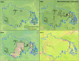 Utk Map The Impacts Of Oil Palm On Recent Deforestation And Biodiversity Loss