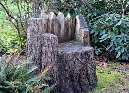 Stump Chair Tree Stump Ideas That Will Blow You Away Bob Vila