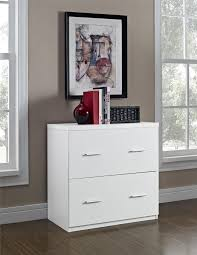 White Lateral File Cabinet Altra Furniture Princeton 2 Drawer Lateral File Cabinet In
