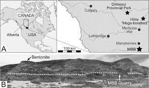 Map Of Canada Showing Calgary by Taphonomy Of A Monodominant Centrosaurus Apertus Dinosauria