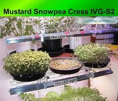 wonderful designs indoor vegetable gardening