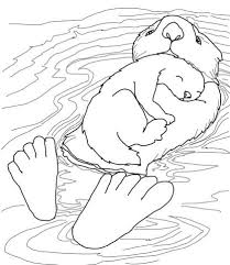 free baby coloring pages sea ottter with baby coloring page free printable coloring pages