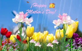 happy thanksgiving for facebook status mothers day photos day animated wallpaper download screensaver