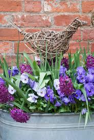 hyacinths pansies galvanised tub willow bird ornament plant