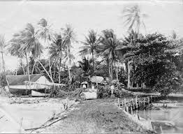 Marshallese Flag Dirk Hr Spennemann Ed Historic Images Of The German Marshall