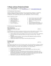 Seo Specialist Resume Sle email marketing resumes pertamini co
