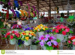 Flower Shops by Flower Shop Editorial Stock Image Image 42283274