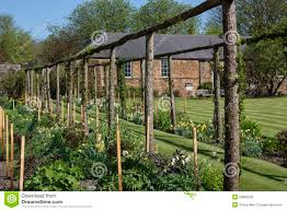 English Garden Pergola by English Country Garden Yorkshire England Editorial Stock Photo