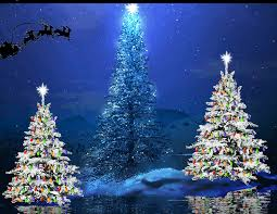 santa s sleigh flying trees pictures photos and