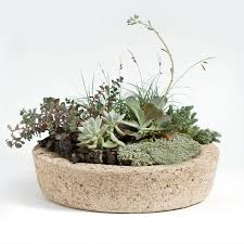 Low Bowl Planter by Low Profile Hypertufa Planter Large Garden Planters Outdoor