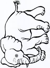 baby jungle animal coloring pages jungle coloring pages to print
