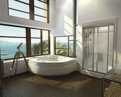 shower units vs bathtubs advantages disadvantages