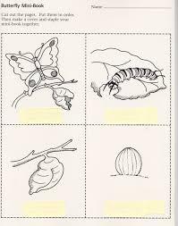 butterfly minibook jpeg