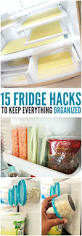 15 tricks that will change the way you use your fridge
