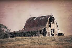 Tom Barn Rustic Barn Photographs Fine Art America