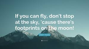 you can fly adam young quote if you can fly don t stop at the sky cause