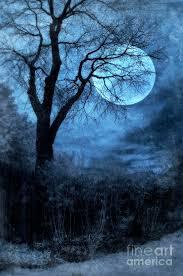 moon through bare trees branches photograph by battaglia