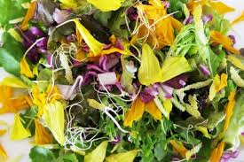 Salad With Edible Flowers - how to make an edible flower power spring salad with marigold
