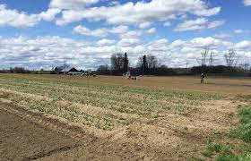 agricultural journalism jobs ukiah farmers wait and wait for guest workers amid h 2a visa delays