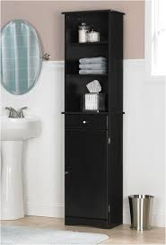 Tall Mirrored Bathroom Cabinets by Best 25 Tall Bathroom Cabinets Ideas On Pinterest Bathroom