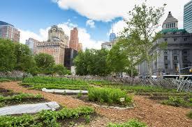 urban farming 101 how to start an urban farm earth911 com