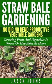 straw bale gardening u2013 no bend no dig productive vegetable