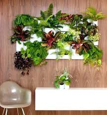 indoor succulent garden hanging indoor vertical vegetable garden