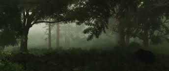 deep forest scene pack this product includes 3 scenes for vue 9