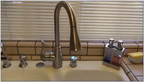 moen anabelle kitchen faucet moen anabelle kitchen faucet 87650srs faucets home design