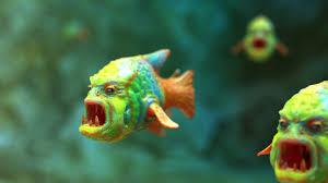 captivity makes fish aggressive sunnimdia5003