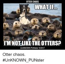 Cumberbatch Otter Meme - otter chaos i m not like the otters unknown punster 2017 otter
