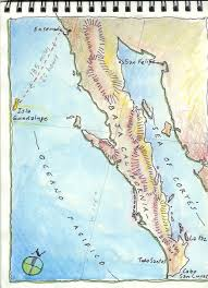 Guadalupe Mexico Map by Drawing On The World Journey To Isla Guadalupe