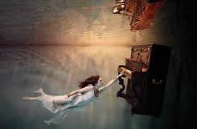 by harry fayt underwater harry fayt pinterest the fascinating underwater photos of harry fayt holland times