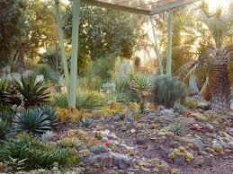 Succulent Rock Garden by Required Reading Ruth Bancroft U0027s Bold Dry Garden Gardenista