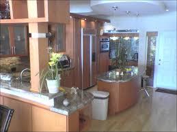 kitchen best kitchen cabinets painting kitchen cabinets base