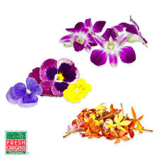 edible flowers edible flowers sler pansies orchids marx foods