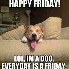 Meme Happy - its friday meme happy friday funny images