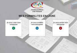 cfe chambre des metiers immatriculation cma45 fr