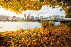 portland neighborhoods guide portland oregon city guide utrip travel planning blog