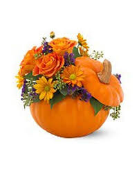 flower delivery rochester ny fall flowers delivery rochester ny expressions flowers gifts