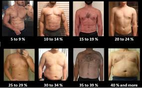 how to estimate your body fat percentage bf ketogains