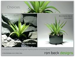 home decor plant decorations plants for home decor artificial indoor plants for
